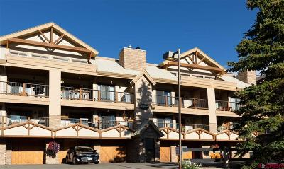 Mt. Crested Butte Condo/Townhouse For Sale: 20 Hunter Hill Rd #210