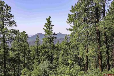 Durango Residential Lots & Land NEW: 65 Overlook Drive