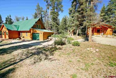 Durango Single Family Home NEW: 1129 Sierra Verde Drive