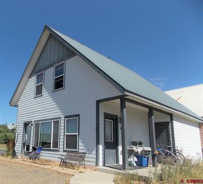 Pagosa Springs Single Family Home For Sale: 463 7th