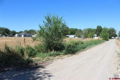 Delta Residential Lots & Land For Sale: 2160 Pioneer Road