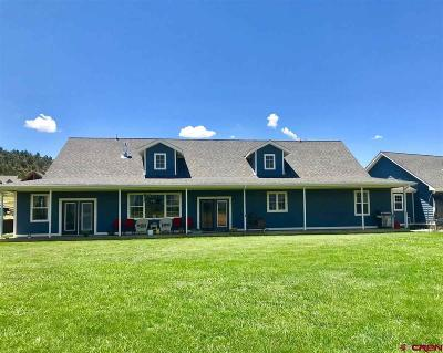 Hotchkiss, Crawford, Paonia Single Family Home For Sale: 2605 Antler Court
