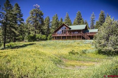 Pagosa Springs Single Family Home For Sale: 131 Usfs 628b