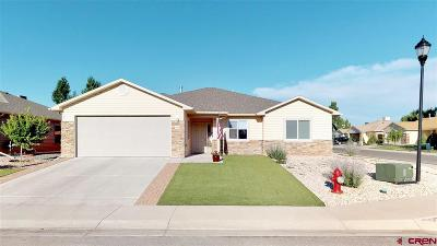 Montrose Single Family Home UC/Contingent/Call LB: 1304 Cement Creek