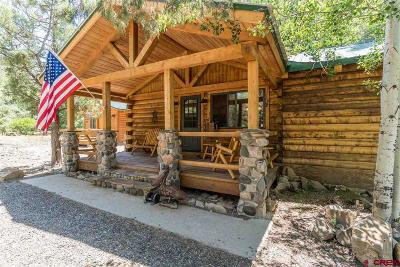 Pagosa Springs Single Family Home UC/Contingent/Call LB: 399 Morning Rain Court
