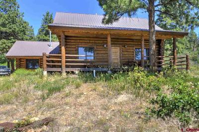 Durango Single Family Home UC/Contingent/Call LB: 1580 Damascus