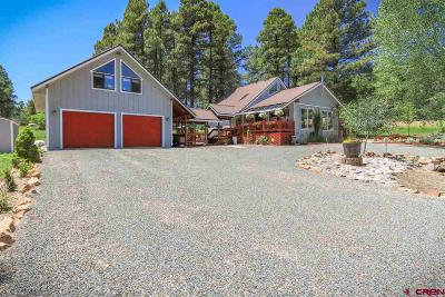 Pagosa Springs Single Family Home For Sale: 54 Hunter Court