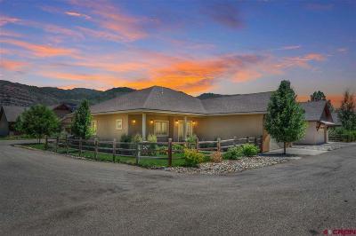 Durango Single Family Home For Sale: 62 Estancia Lane