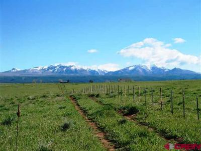 Hesperus Residential Lots & Land For Sale: Cr 119