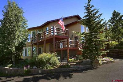 Gunnison County Single Family Home For Sale: 24 Anthracite Drive