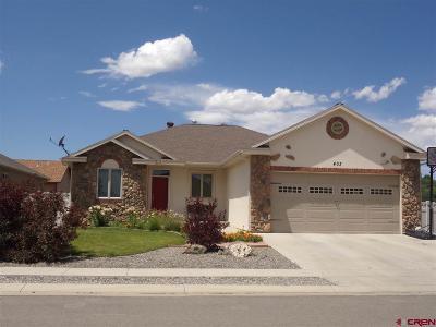 Montrose Single Family Home UC/Contingent/Call LB: 403 Vermillion Avenue