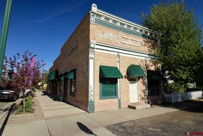 Gunnison County Commercial For Sale: 600 W Tomichi Avenue