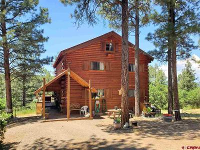 Pagosa Springs Single Family Home For Sale: 1885 Shenandoah Drive