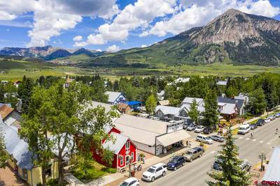 Crested Butte (Town Of) Single Family Home For Sale: 327 Elk Avenue