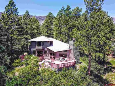 Durango Single Family Home UC/Contingent/Call LB: 21 Lechner Lane