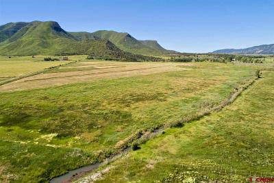 Mancos Residential Lots & Land For Sale: Hwy 160