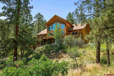 La Plata County Single Family Home For Sale: 299 Antelope Drive