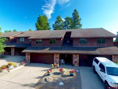 Durango Condo/Townhouse For Sale: 255 Pine Ridge Loop #C5