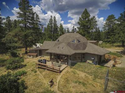 Pagosa Springs Single Family Home For Sale: 290 Nature's Way Court