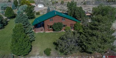 Durango Single Family Home For Sale: 123 Lone Wolf Drive