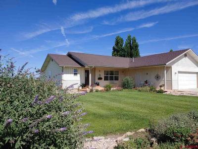 Delta CO Single Family Home For Sale: $375,000