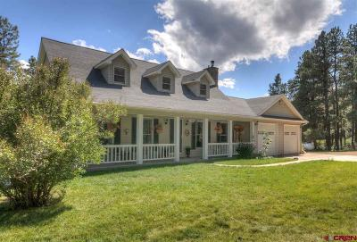Single Family Home For Sale: 306 Cr 504