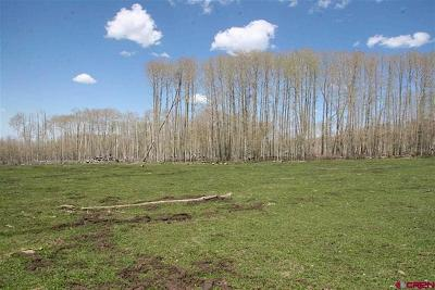 Mancos Residential Lots & Land For Sale: 19602 42 Road