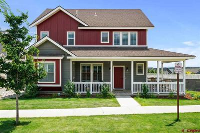 Single Family Home For Sale: 250 Salt Brush Street