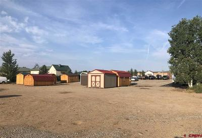 Gunnison County Commercial For Sale: 1160 N Main Street #Vacant