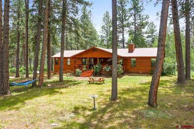 Durango Single Family Home For Sale: 92 Vaca Place