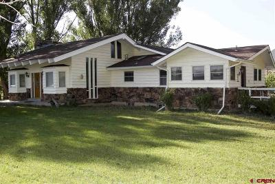Hotchkiss, Crawford, Paonia Single Family Home For Sale: 39479 Lund Rd
