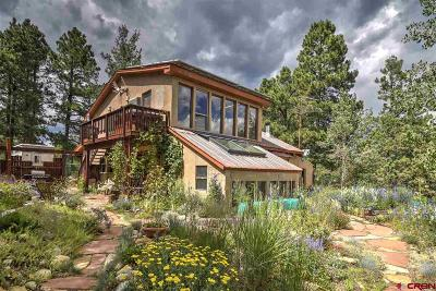 Durango Single Family Home For Sale: 45 Wildcat Road