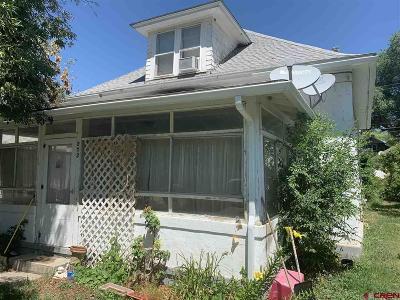 Hotchkiss, Crawford, Paonia Single Family Home For Sale: 272 E Main Street