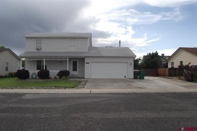 Montrose County Single Family Home For Sale: 2065 Sara E Lane