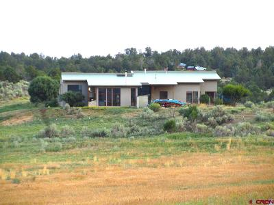 Mancos Single Family Home For Sale: 38377 Road J.5