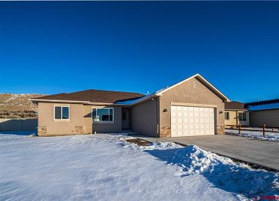 Montrose County Single Family Home For Sale: 1828 6438 Drive