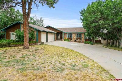 Durango Single Family Home For Sale: 193 Aspen Drive