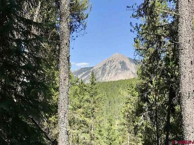 Crested Butte Residential Lots & Land For Sale: 8 Wildcat Trail