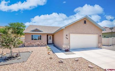 Montrose Single Family Home UC/Contingent/Call LB: 1764 6438 Drive