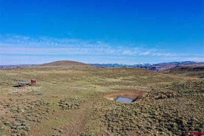 Gunnison County Residential Lots & Land For Sale: 12000 County Road 26