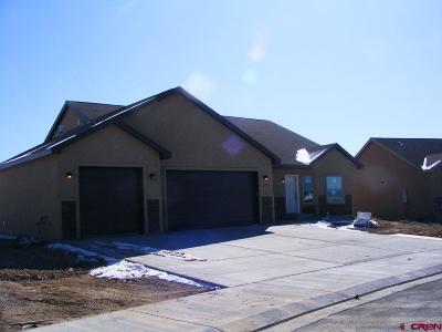Montrose Single Family Home For Sale: 2517 Pecan Street