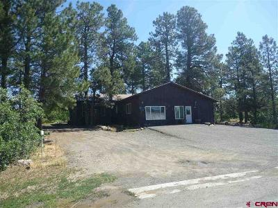 Pagosa Springs Single Family Home UC/Contingent/Call LB: 130 E Golf Place