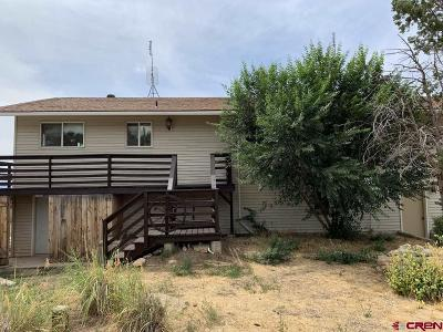 Mancos Single Family Home For Sale: 15045 31 Road