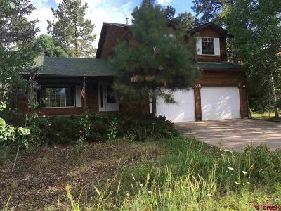 Durango Single Family Home For Sale: 536 Oak