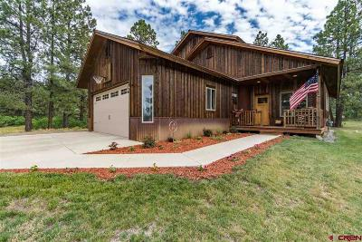 Pagosa Springs Single Family Home UC/Contingent/Call LB: 1697 Majestic Drive