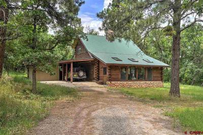 Durango Single Family Home For Sale: 55 Snowshoe Lane