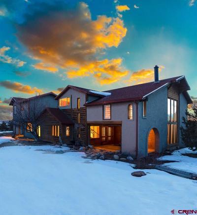 Durango Single Family Home For Sale: 601 Cr 309