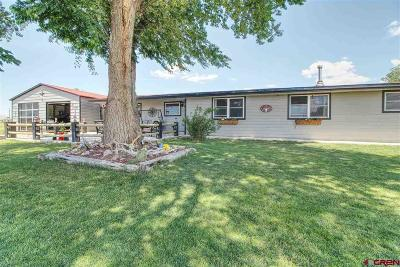 Dolores Single Family Home For Sale: 27425 Road M