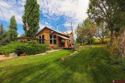 Durango Single Family Home UC/Contingent/Call LB: 920 Cr 216