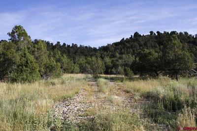 Mancos Residential Lots & Land For Sale: Road J.9